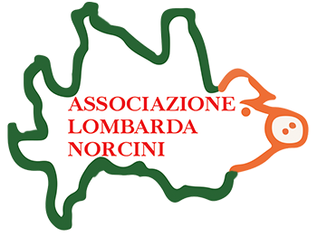 Norcini Lombardi Retina Logo